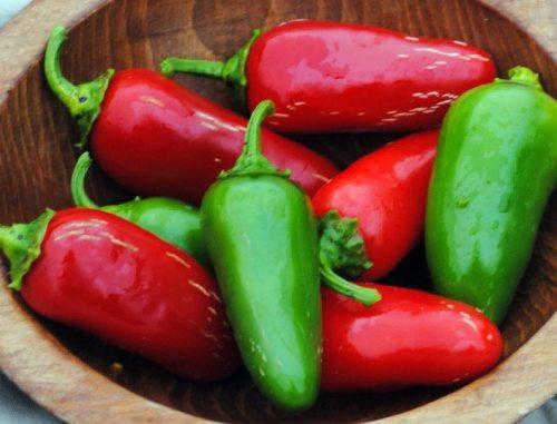 chile serrano sustituto jalapeño